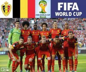 Puzle Seleção da Bélgica, Grupo H, o Brasil 2014