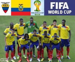 Puzle Seleção do Equador, Grupo E, Brasil 2014