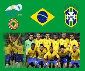 Puzle Seleção do Brasil, Grupo B, Argentina 2011