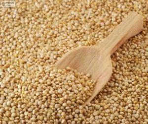 Puzle Sementes de quinoa