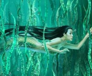 Puzle Sereia nadando entre as algas