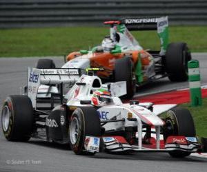 Puzle Sergio Perez - Sauber - Sepang 2011