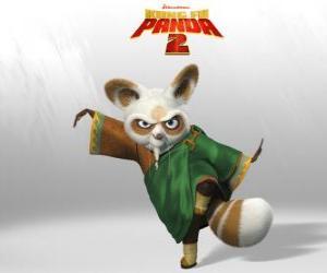 Puzle Shifu é o treinador de todos os grandes lutadores de kung fu no país.