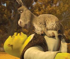 Puzle Shrek e Burro, olhando
