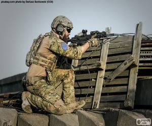Puzle Soldado