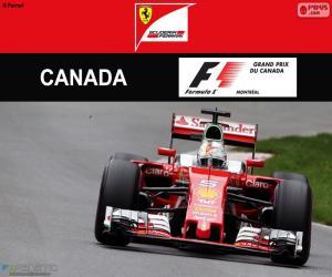 Puzle S.Vettel, G.P Canadá 2016