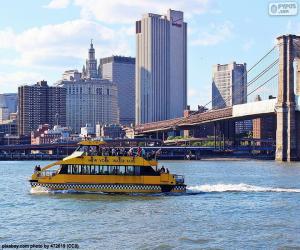 Puzle Táxi aquático de Nova York