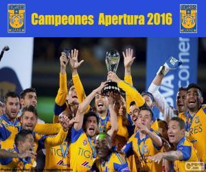 Puzle Tigres UANL, Apertura 2016