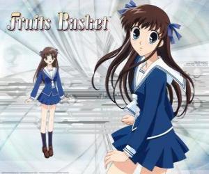 Puzle Tohru Honda é uma estudante do ensino médio eo personagem principal de Fruits Basket ou Furuba