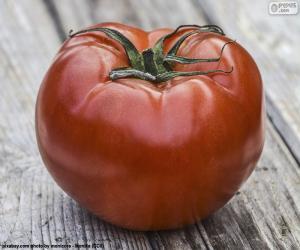 Puzle Tomate