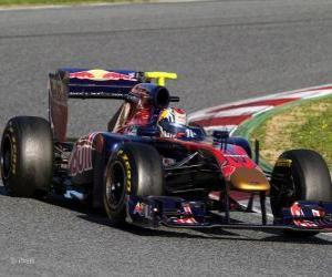 Puzle Toro Rosso STR6 - 2011 -