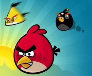 Puzle Três dos pássaros de Angry Birds