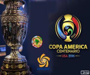 Puzle Troféu Copa América 2016
