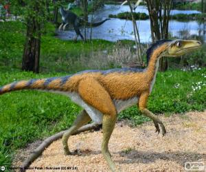 Puzle Troodon
