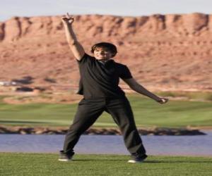 Puzle Troy Bolton (Zac Efron)
