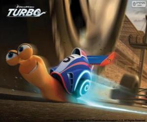 Puzle Turbo, o caracol mais rápido do mundo