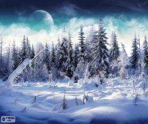 Puzle Um bosque nevado