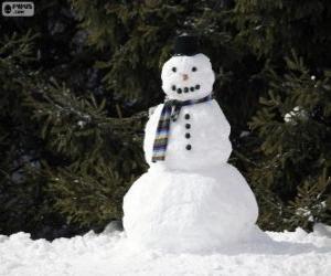 Puzle Um elegante boneco de neve
