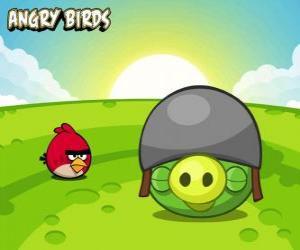 Puzle Um pequeno pássaro vermelho ao lado de um porco com capacete