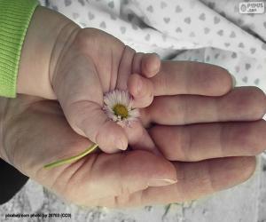 Puzle Uma flor para a mãe