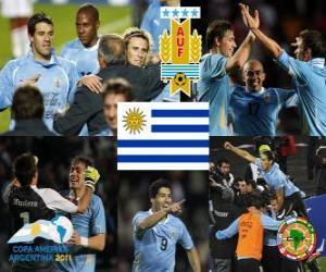 Puzle URU finalista, Copa América 2011