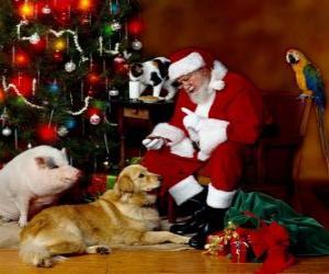 Puzle Vários animais com Papai Noel
