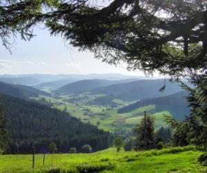 Puzle Vale na floresta negra, Alemanha