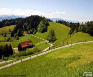 Puzle Verdes prados de montanha