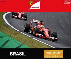 Puzle Vettel, G. P do Brasil 2015