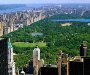 Puzle Vista aérea do Central Park, Nova Iorque