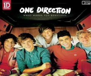 Puzle What Makes You Beautiful, One Direction