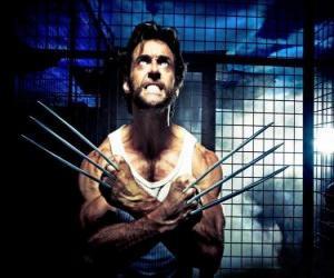 Puzle Wolverine é um super-herói mutante e uma dos X-Men o dos Novos Vingadores
