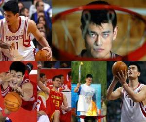 Puzle Yao Ming se aposentar do basquete profissional (2011)