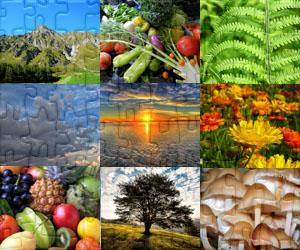 Puzzles de Natureza